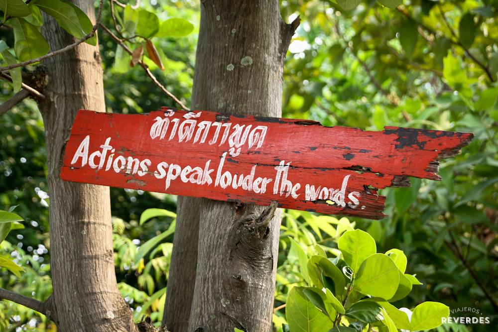 Las acciones hablan más alto que las palabras