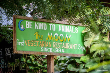 Be kind to animals - The Moon Restaurant Bagán