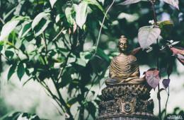 Postales desde Chiang Mai