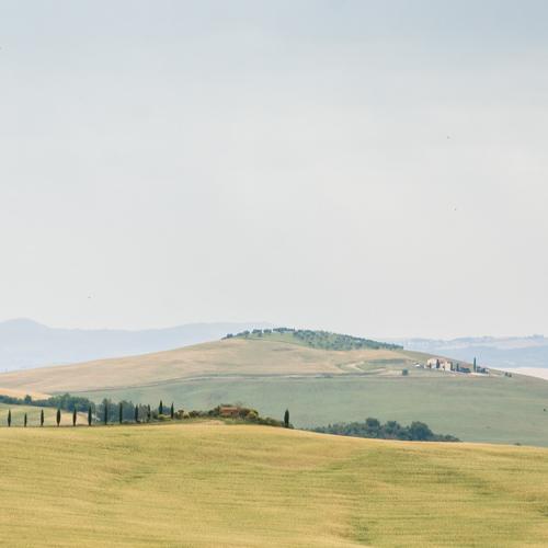 Horizonte Toscana