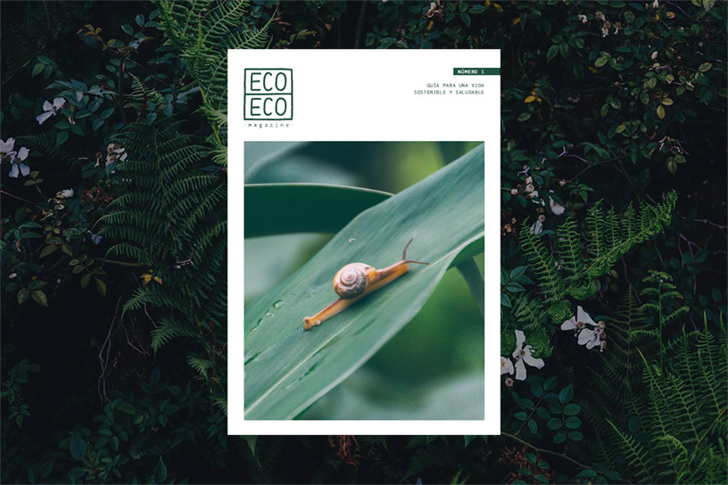 Eco Eco Magazine